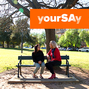 Mental Health Services Plan – Have yourSAy