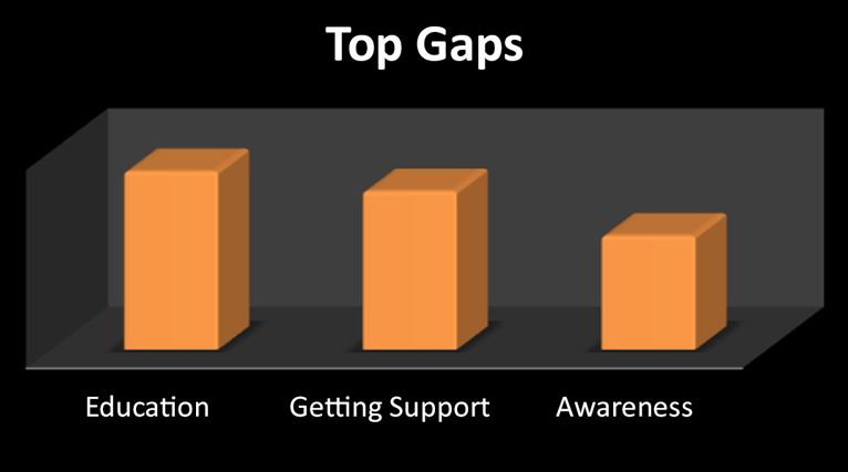 Top Gaps: Education, Getting Support, Awareness